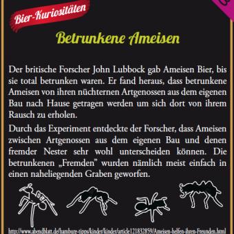 gold-ochen_kastenaufleger_6.png